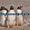 Пингвины  из питомников Испании, ФРГ #633446