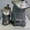 Гидромотор 303.3.112.501.002 Аналог( ГММР 1.112/501.002) #1370389