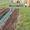 Сборная дорожка между грядками,  удобная дорожка для огорода ПластДор-Мини #1379601