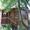 Дача,  2 этажа 65 кв.м.,  г.Подольск,  СНТ Калина,  Симферопольское ш. #1580255