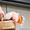 Какаду инка (Cacatua leadbeateri) - ручные птенцы из питомников Европы... #1144352