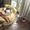 Круглая интерьерная кровать «Жемчужина» #1697366