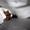 Экскурсии в шоколадную мастерскую - мастер-классы и дегустации #1695588