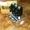 ГидроРАСПРЕДЕЛИТЕЛЬ 158F0453,  158F0460 многосекционный  Зауэр Данфосс,  Sauer-Dan #1700146