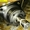 Героторный Гидромотор OMTW 315 151B3027 Зауэр Данфосс,  Sauer-Danfoss Зауэр Данф - Изображение #4, Объявление #1700121
