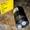 Гидромотор OMM 8 151G0046 Шлицы 9 16,5 мм НАЛИЧИЕ  - Изображение #2, Объявление #1700030