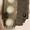 Клапан рулевого управления EHPS 150H0003 SYSTEM TYPE 0 VALVE EHPC 80/10-0, EHPC  - Изображение #3, Объявление #1702417