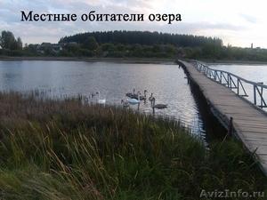 Жилой кирпичный дом на берегу озера. Беларусь - Изображение #10, Объявление #1600461