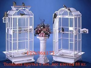 Клетки,насесты, корма для попугаев из Австрии,Чехии  - Изображение #5, Объявление #760466