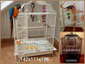 Клетки,насесты, корма для попугаев из Австрии,Чехии  - Изображение #1, Объявление #760466