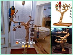Клетки,насесты, корма для попугаев из Австрии,Чехии  - Изображение #3, Объявление #760466