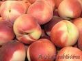 Продаем красивые,  сладкие персики - Коллинс,  Редхевен,  Кардинал...