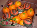 Апельсин из Египта (Oranges from Egypt)