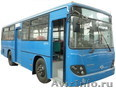 Автобусы Kia, Daewoo,  Hyundai