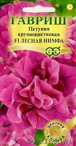 Семена почтой цветы - Первые семена
