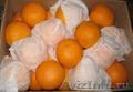 Апельсины «Navelina»