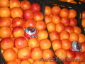 КРАСНЫЙ АПЕЛЬСИН, мандарин, яблоко, шампиньон, перец