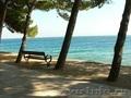 Аренда шикарной виллы на острове Брач,  в Хорватии!