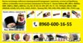 Купим кабель с хранения и новый. Остатки кабеля от 100м. C ПВХ изоляцией: ВВГ-П,, Объявление #1174966