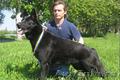 Черные немецкие овчарки - питомник