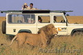 Туры в ЮАР. Экзотическое очарование Южной Африки.