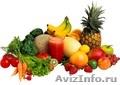 Продажа фруктов и овощей оптом., Объявление #1329883