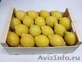 Продаем лимоны из Испании, Объявление #1328891