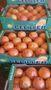 грейпфрут из Испании, Объявление #1487254