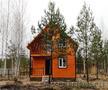 Новый загородный дом в сосновом лесу,  рядом с рекой Вексой