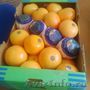 грейпфрут из Испании - Изображение #3, Объявление #1487254