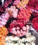 Сервис по доставке самых свежих роз по оптовым ценам