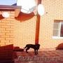 Продается дом Раменский район  деревня Островцы ул.Центральная, Объявление #1379375