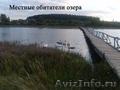 Жилой кирпично-щитовой дом на берегу озера. Беларусь - Изображение #10, Объявление #1600461