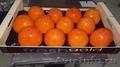 Свежие фрукты оптом - Изображение #4, Объявление #1602199
