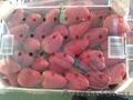 Свежие фрукты оптом - Изображение #8, Объявление #1602199