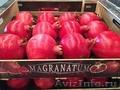 Свежие фрукты оптом - Изображение #9, Объявление #1602199