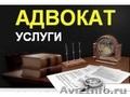 Адвокат,  консультации,  суды,  споры